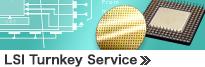 LSI Turnkey Service